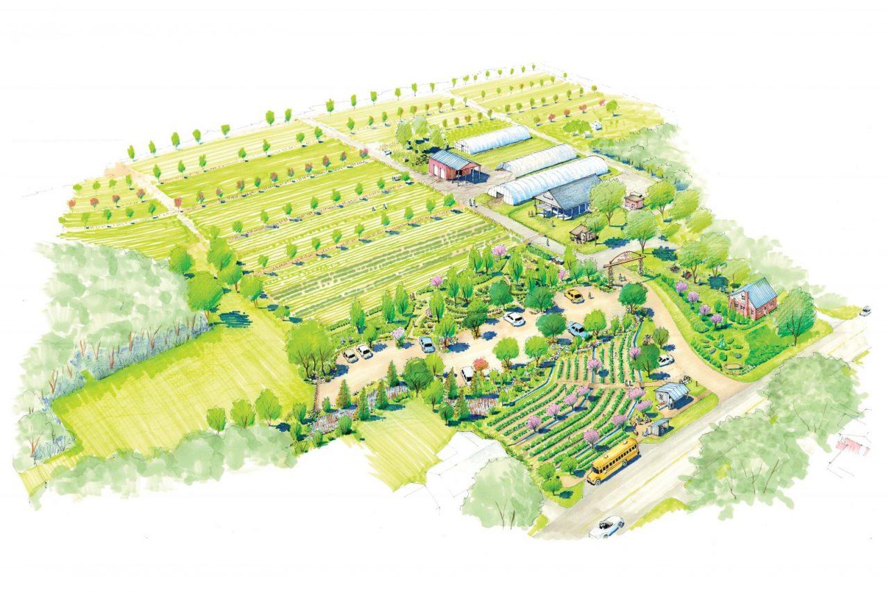 Ferguson Farms